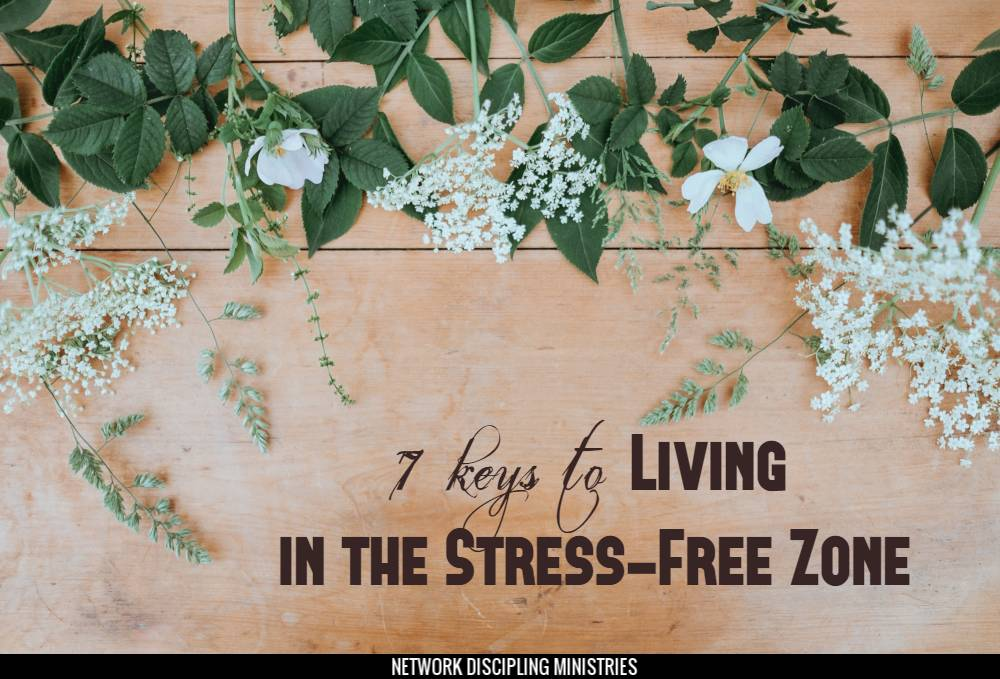 7 Keys to Living in the Stress-Free Zone Image